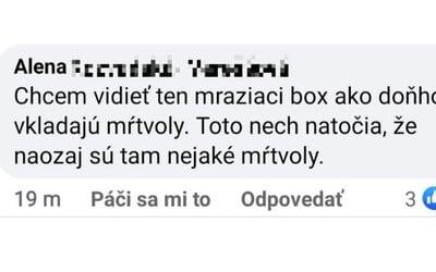 """""""Chcem vidieť ten mraziaci box ako doňho vkladajú mŕtvoly,"""" písala Slovenka Alena. Polícia ju poslala pomáhať do nemocnice v Nitre"""