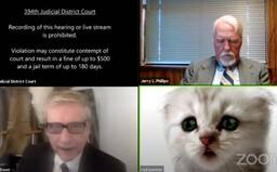 """""""Ja nie som mačka,"""" tvrdil právnik sudcovi počas videohovoru. Nevedel si vypnúť filter"""