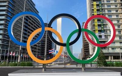 Přehled: Podívej se, kdy soutěží čeští sportovci a co nám poslední týden olympiády přinese.