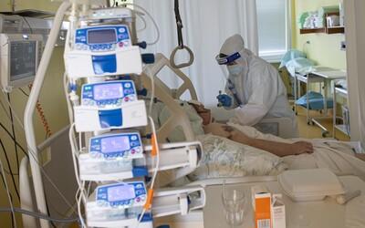 Ivermektín nie je výrazne účinný proti Covid-19, ukázala štúdia. Nepomohol ani pacientom mimo nemocníc.