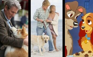 10 najlepších filmov, v ktorých hrali psy dôležitú úlohu