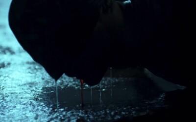 Marvelácky krvavý a brutální Daredevil se prezentuje v novém traileru