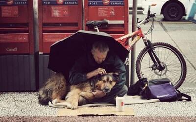 13 dojímavých fotografií dokazujúcich, že psy nás ľúbia všetkých rovnako