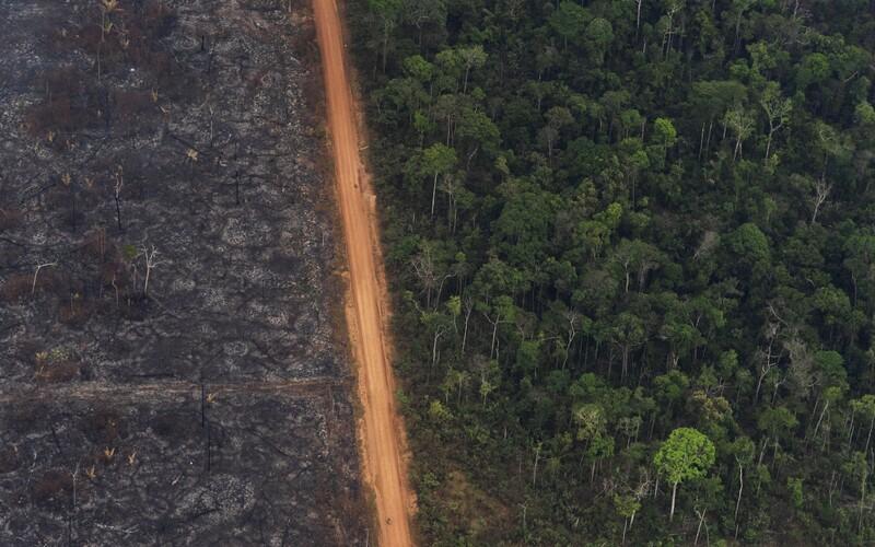 Amazonský prales opět v plamenech. Požárů je o třetinu více než loni.