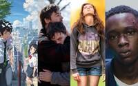 15 najlepších neznámych a nenápadných filmov minulého roka, ktoré svojou kvalitou predčili aj oscarové drámy