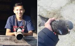 15-ročný ochranár prírody Martin: Počas života som už zachránil okolo 250 až 300 vtákov