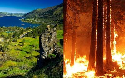 15letý kluk nechtěně podpálil les, teď musí zaplatit 37 milionů dolarů