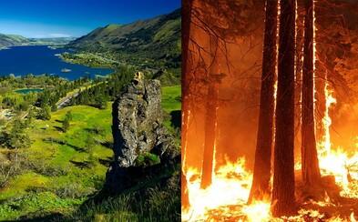 15-ročný tínedžer nechtiac podpálil les, teraz musí zaplatiť 37 miliónov dolárov. Chlapec dostal od súdu exemplárny trest