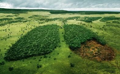 20 silných kampaní, ktoré zmenia váš pohľad na životné prostredie. Po tomto sa na Zem budeš pozerať úplne inak
