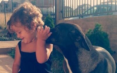 22 krásnych príkladov toho, ako si deti rozumejú so psami