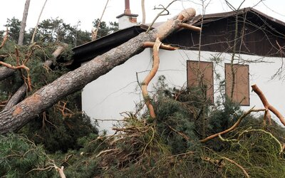 ČHMÚ varuje před silným větrem: Hrozí hlavně v Praze a okolí.