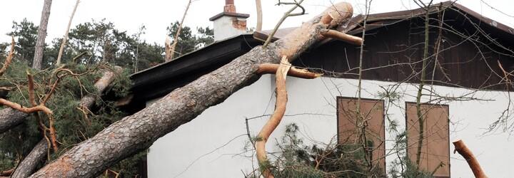 Do Čech přivane silný vítr, který místy nabere rychlost až 90 km/h, varuje ČHMÚ