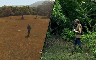26 rokov sa snažili obnoviť zničený les. Dnes im po parku behajú tigre i slony a vrátil sa sem všetok život