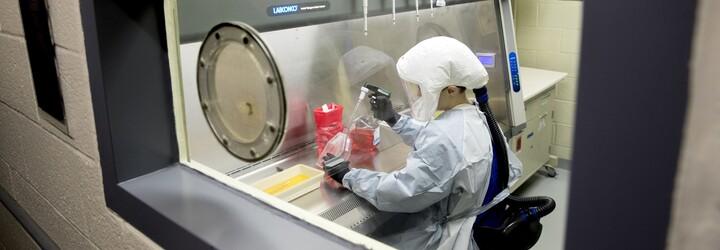 Koronavirus se přizpůsobuje lidem, vědci našli důkaz o mutacích
