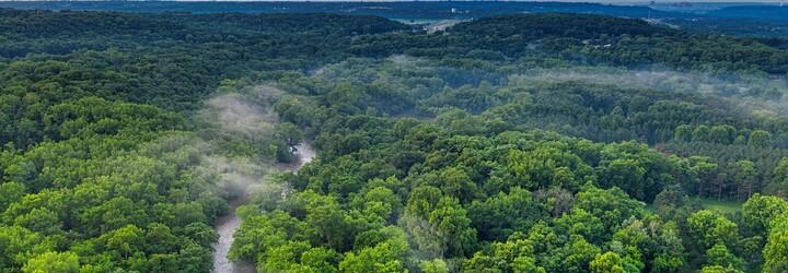 Amazonský dažďový prales začal tvoriť viac emisií CO2, než ich absorbuje. Môže za to najmä vypaľovanie
