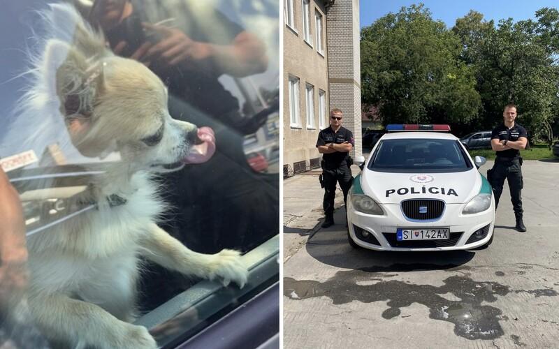 V Senici nechal vodič v aute zamknutého psa. Počas horúčav ho v obchode musela hľadať polícia.