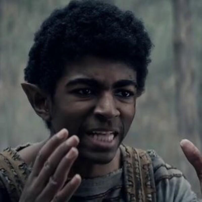 Jak se jmenoval elf, který dělal Ciri společnost na její cestě pryč z Cintry?