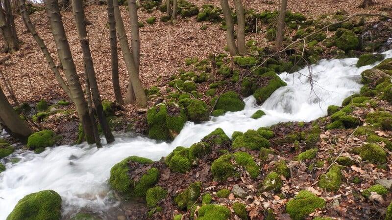 Koľko je na Slovensku registrovaných prameňov minerálnych vôd?