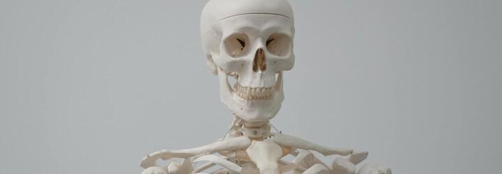 Tiktoker se na svém účtu chlubí obrovskou sbírkou lidských kostí. Lidé jsou zmatení z toho, odkud je všechny má