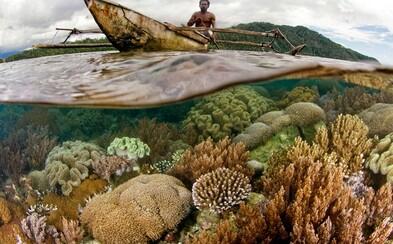 600 druhov koralov a 1800 druhov rýb. Zaplávaj si vďaka 360-stupňovému videu vo vzácnej koralovej oblasti pri Indonézii