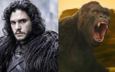 Godzilla vs Kong sa začalo natáčať a George R. R. Martin nedokáže dokončiť Winds of Winter, pretože seriál je nesmierne populárny