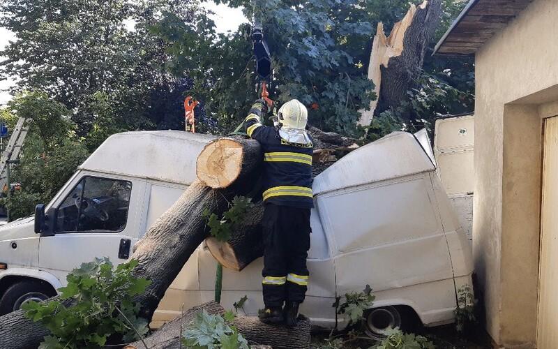 V Česku už řádí bouře: Hasiči hlásí desítky incidentů, silný vítr láme stromy.