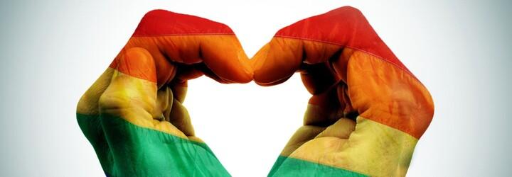 Po útoku na homosexuální pár se nizozemští muži chytají na znak solidarity za ruce. Postupně se přidává i zbytek světa