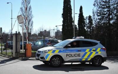 Žena se v Plzni svlékla do naha a agresivně útočila na policejní hlídku.
