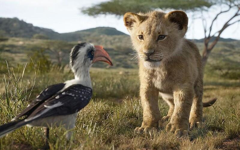Pokračování Lvího krále natočí režisér oscarového Moonlight.