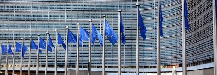 EU zakazuje křivé okurky a zabíjačky, za všechno může Brusel. TOP 5 mýtů o Evropské unii