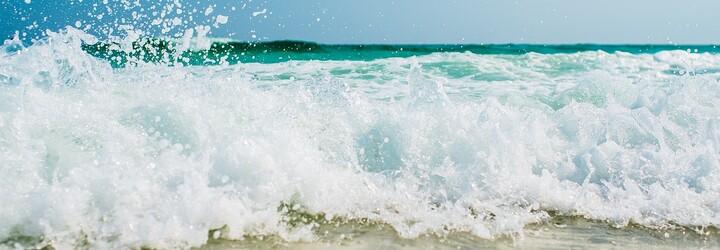 Mexický rezort ti zaplatí 120 tisíc dolarů za přidávání fotek na Instagram, plavání se žraloky či pozorování želv