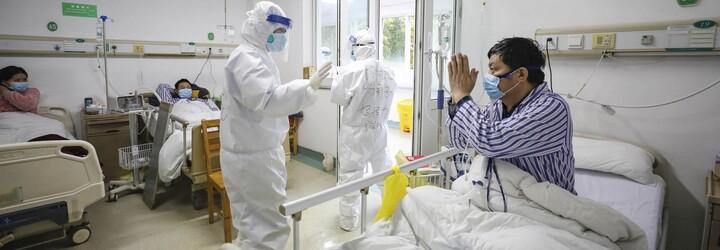 Unikol koronavírus z laboratória, alebo sa rozšíril prostredníctvom netopierov? Vznik pandémie vysvetľuje virológ Boris Klempa