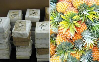 745 kilogramů kokainu pašovali na netradičním místě. Španělská a portugalská policie našla bílý prášek v ananasech