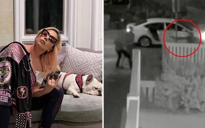 VIDEO: Výstrel z pištole do hrude. Takto Lady Gaga ukradli vzácnych psov, keď postrelili muža, ktorý ich chodieva venčiť.