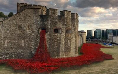 888 246 makov v londýnskom Toweri pripomína krviprelievanie počas 1. svetovej vojny