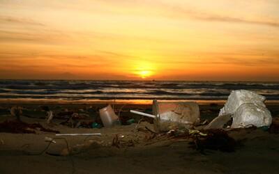 Vláda schválila zákaz jednorázových plastových příborů, talířů a brček.