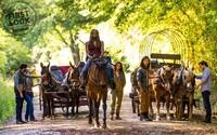 9. séria Walking Dead poskočí v čase. Prvá fotografia odhaľuje, že ľuďom dochádza palivo do áut aj funkčné zbrane a náboje