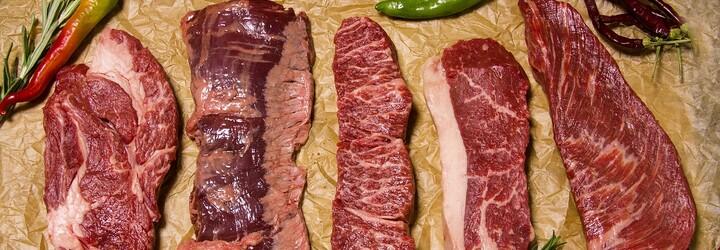 Muž na veganském festivalu pojídal syrové maso. Na tričku měl pro návštěvníky drsný vzkaz