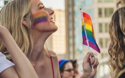 Manželství homosexuálních párů by měly uznávat všechny státy EU, prohlásil Evropský parlament.