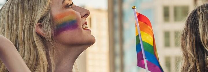 Manželství homosexuálních párů by měly uznávat všechny státy EU, prohlásil Evropský parlament
