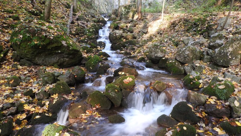 Ktorá z týchto minerálok pramení v Slovenskom krase?