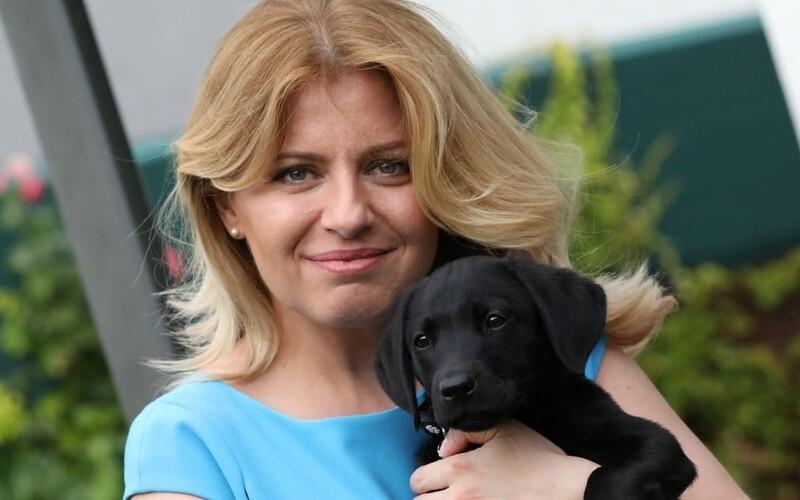 Zuzana Čaputová predstavuje nového člena rodiny. Privítaj Leona, ktorý bude strážiť hlavu štátu.