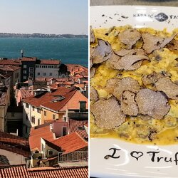Reportáž z jesennej Istrie: hľadali sme hľuzovky, jedli v michelinskej reštaurácii a ochutnávali najlepší olivový olej na svete