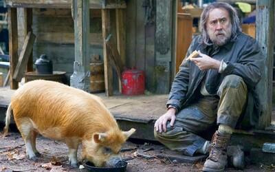 Nicolasi Cageovi unesou nejlepšího kamaráda – prase. Tiché drama se rázem změní v mrazivý thriller o pomstě.