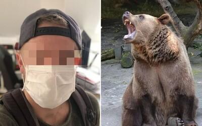 Medvěd zabil trenéra s nasazenou rouškou. Kvůli zakryté tváři ho nepoznal.