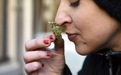 I rekreační užívání marihuany může u teenagerů způsobovat výpadky paměti, tvrdí výzkum