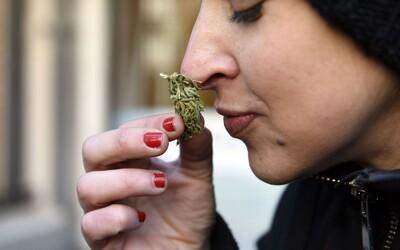 Aj rekreačné užívanie marihuany môže u tínedžerov spôsobovať výpadky pamäte, tvrdí výskum