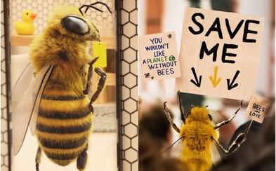 Aj včela môže byť influencerka. Túto sleduje viac ako 100-tisíc ľudí, vplyv využíva na zvyšovanie povedomia ochrane hmyzu