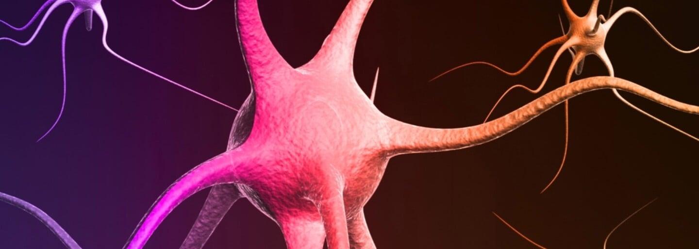 Ako dlho v tvojom tele ostanú tráva či extáza? Niektoré drogy môžeš vylučovať aj mesiac
