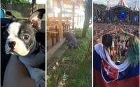 Ako strávili leto Slováci? Čitateľov sme vyzvali, aby nám zaslali ich najlepšie fotografie zo slnečných mesiacov